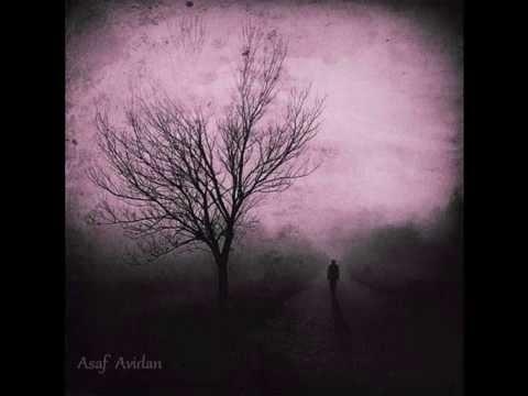 Tekst piosenki Asaf Avidan - Setting Scalpels Free po polsku