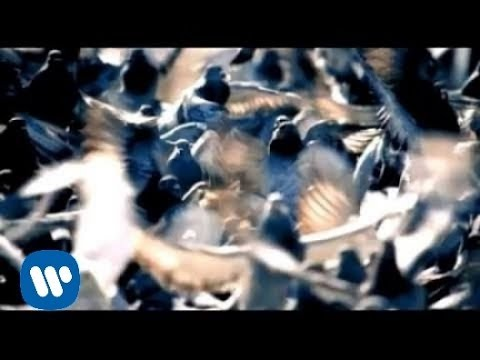 Tekst piosenki Goo Goo Dolls - Dizzy po polsku