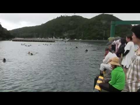 種子島の学校活動:国上小学校・古田小学校第24回浦田湾横断遠泳大会