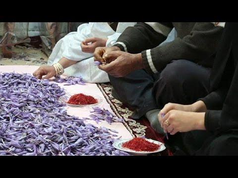 Κρόκος: Ο «κόκκινος χρυσός» του Ιράν – economy