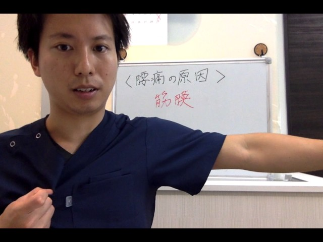 筋膜ってご存知ですか??