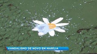 Vândalo destrói pintura de escola infantil em Marília
