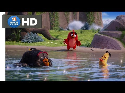 The Angry Birds Movie Hindi (08/14) The Lake Of Wisdom(बुद्धि ताल झील) Scene MovieClips