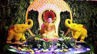 TRỰC TIẾP: Đêm hoa đăng kỷ niệm ngày Phật thành đạo 13-01-2019
