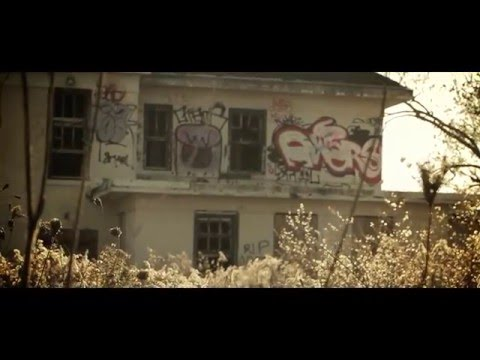 Thumbnail for video YQ6KzBEVdaA