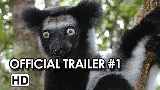 Nonton Island Of Lemurs  Madagascar Official Trailer  1  2014    Nature Documentary Hd Film Subtitle Indonesia Streaming Movie Download