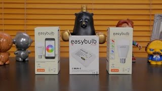 Easybulb Plus Setup & Review
