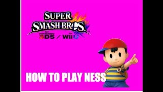 "An ""In-Depth"" Guide on NEss"