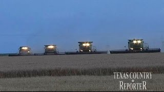 Perryton (TX) United States  City pictures : Davis Family Wheat Farm (Texas Country Reporter)