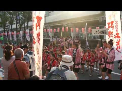2012 かわさき阿波おどり「第一ひかり幼稚園」さん