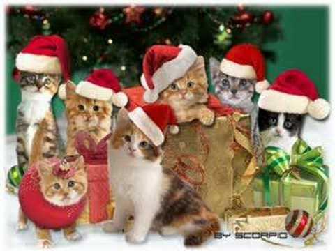 ¡¡¡Feliz Navidad a todos!!!