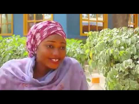Kannywood English Movie (There Is A Way)Teaser