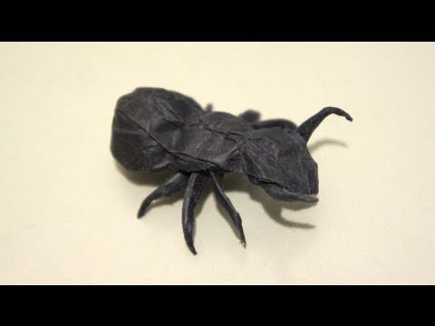 Insect Tutorial - 029 -- Ant
