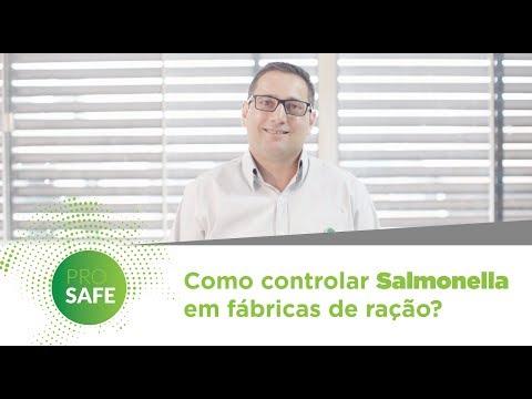 Como controlar Salmonella em fábricas de ração?