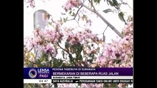 Video Surabaya Masuk Babak Final Kota Terbaik di Dunia MP3, 3GP, MP4, WEBM, AVI, FLV Desember 2018