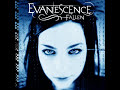 Evanescence – Tourniquet