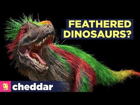 Dinosauriers hadden haar en veren