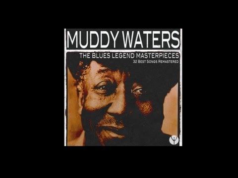 Tekst piosenki Muddy Waters - Gypsy Woman po polsku