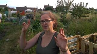 Sustainability TV – Get Diggin It – Part 2