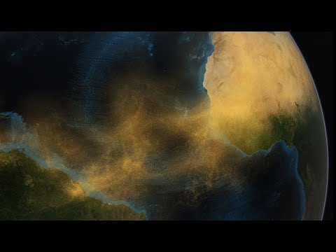 Amazon Rain Forest - journey to the Sahara desert Dust gift.        የአማዞን ጥቅጥቅ ደን የሰሀራ በርሀዉ አቧራ ስጦታ