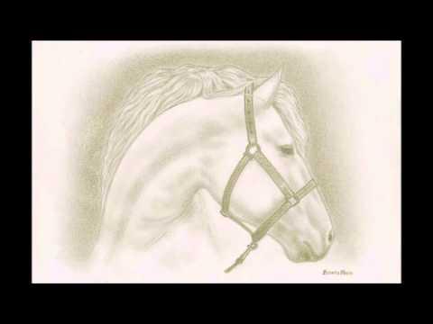Humokes:Zeichnung #1 Pferd
