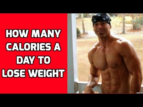 How Many Calories Should I Eat To Lose Weight – How Many Calories a Day To Lose Weight