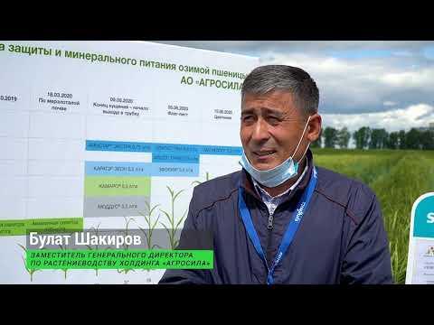 АГРОСИЛА и СИНГЕНТА презентовали инновационные средства защиты растений
