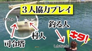 あっちの堤防から釣ってみた!夏イカ3人協力プレイ!
