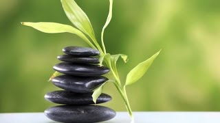 6 Hour Zen Music: Meditation Music, Relaxing Music, Calming Music, Soothing Music, Relaxation, ☯2819 – Our Reiki Music and Zen Music is ideal for Reiki heali...