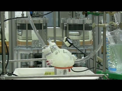 Testing a soft artificial heart