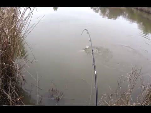 Očima lovce 6-přívlač na svazové vodě-štika