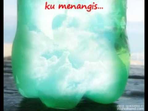 dinda-organic(cover)