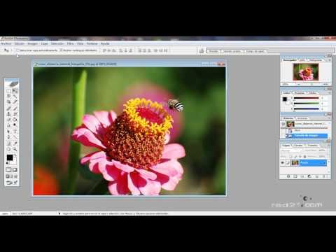 Como imprimir fotografías desde Adobe Photoshop