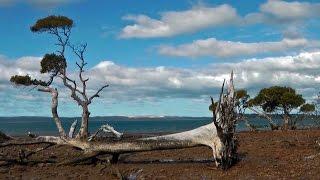 Coochiemudlo Island Australia  city photos : Coochiemudlo Island