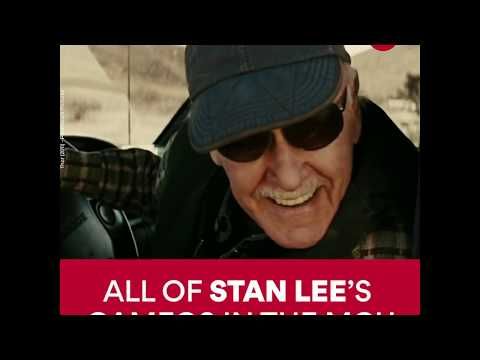 Every Stan Lee Cameo (Marvel Cinematic Universe) | AMC Theatres (2018)