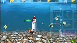 Tap Fish YouTube video