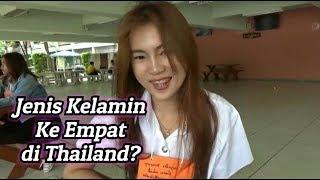 Video JENIS KELAMIN KE EMPAT DI THAILAND ? MP3, 3GP, MP4, WEBM, AVI, FLV Juni 2019