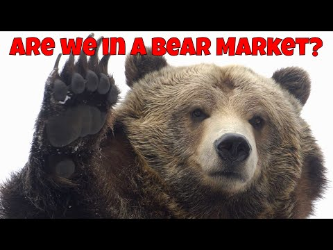 Are We In A Bear Market? | P&D Groups | ICOs video
