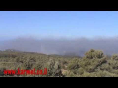 ארכיון מ2010 שריפת הכרמל