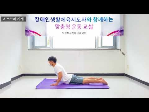 [스트레칭]허리스트레칭 (의정부시장애인체육회 김선우지도자)