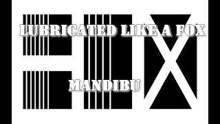Video BOX - Lubricated like a Mandibú - DIY videoklip (2018)