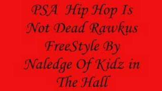 NO VIDEO!!Naledge of kidz in the hall Freestyle