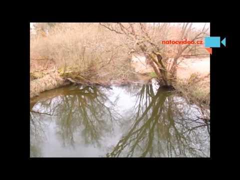 Příroda kolem řeky Lužnice německy Lainsitz