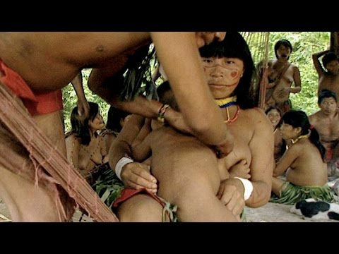 Пигмеии секс смотреть