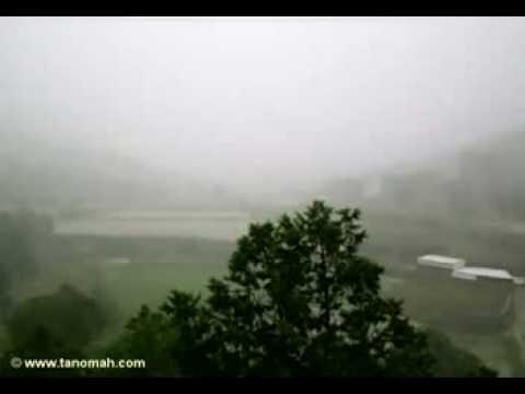 هطور المطر على تنومة بغزارة( ولد تنومة)