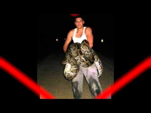 Biggest Burmese Python Ever Caught In Florida