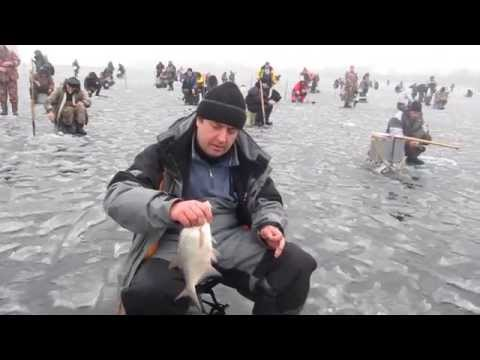 рыбалка на гирлянду видео