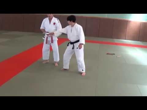 Ju-Jitsu technikák (videó)