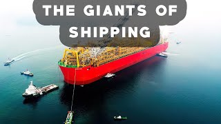 Video THE BIGGEST SHIPS In The World MP3, 3GP, MP4, WEBM, AVI, FLV November 2018