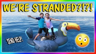 """It's a beautiful sunny day so the kids take the puppies out for a swim....or at least try. They play a few fun games out on the water until everyone has an accident and tries to swim to safety. Subscribe https://www.youtube.com/c/wearethedavises?sub_confirmation=1Our mailing address:We Are The Davises28241 Crown Valley Pkwy Suite F #613Laguna Niguel , CA 92677""""We Are The Davises"""" is an entertaining family vlog channel based in Florida. Our daily videos show our real life moments, challenges, funny skits, and traveling adventures. Shawn is an outstanding father and husband that enjoys coaching children in team sports like football and wrestling. Connie is very creative with our channel as she makes everything in our lives as fun and entertaining as possible while still molding our kids into the amazing people they are today. Kayla is currently 12 years old. Her passion is competitive cheer leading and loves all animals from fluffy puppies to the little frogs. Tyler is 11 years old and is obsessed with playing video games and team sports such as football. We are excited to share our fun filled journey!Check out our gaming channel We Are The Davises Gaming if you love gaming videos.https://www.youtube.com/channel/UCShsPtvK0WzxjljpN4rhVzgPlease be sure to check out all of our social media platforms that we have listed below for you.Twitter:  https://twitter.com/wearethedavisesFacebook:  https://www.facebook.com/wearethedavises/Instagram: https://www.instagram.com/wearethedavises/Google+: https://plus.google.com/u/0/+WeAreTheDavises2016/postsSnapchat:  https://www.snapchat.com/add/wearethedavisesMusical.ly:  wearethedavisesDo you like certain types of videos? Come and check out the playlists that we have setup to make it easier for you to watch what you like.Here is a playlist of all our daily videos. https://www.youtube.com/playlist?list=PL1SgveIsSpIqtjNq-QnGHSHxv410nkJfyThis playlist was put together specifically for all you Kayla fans.https://www.youtube.com/playlist?"""
